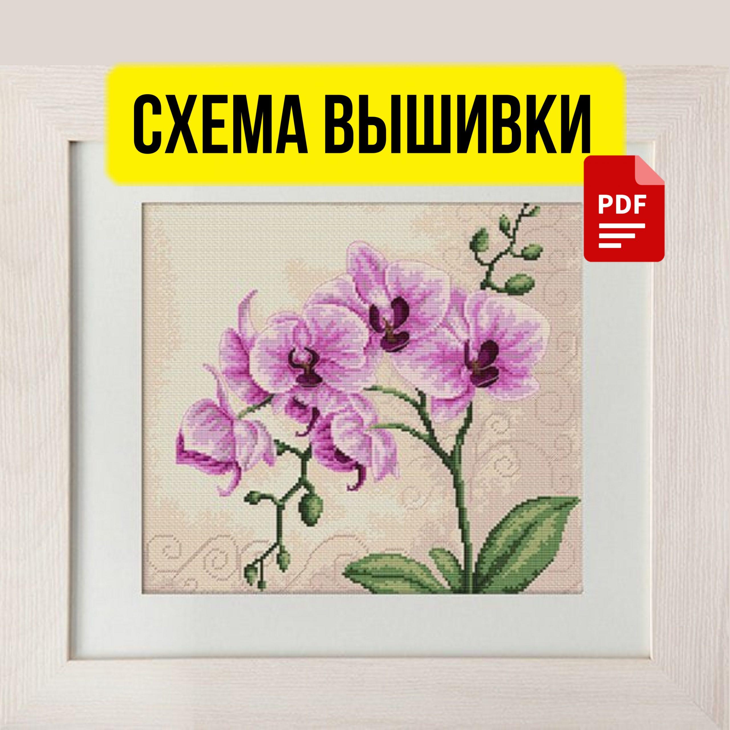 Бесплатная Схема Вышивки Крестом Орхидея. PDF, Большая